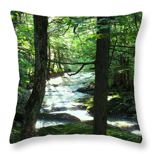 Water Throw Pillow featuring the photograph Peace And Comfort by Sybil Staples