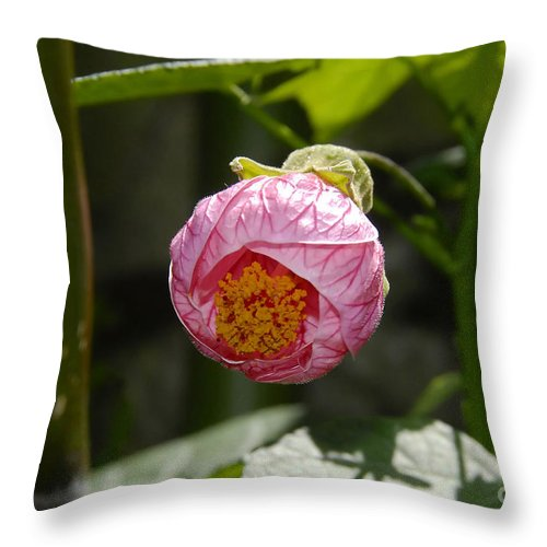 Flower Throw Pillow featuring the photograph Coming Out by David Lee Thompson