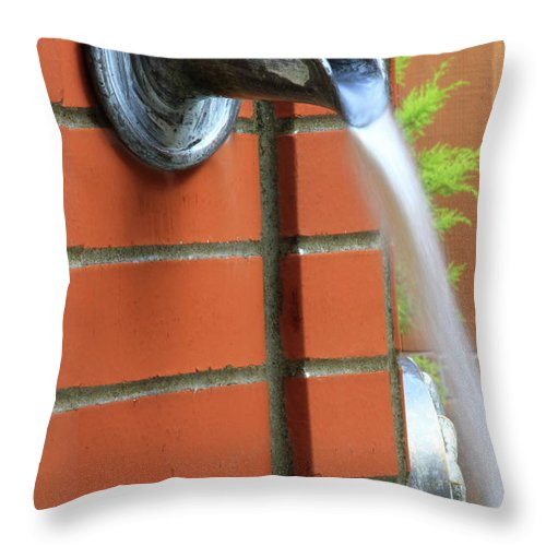 Fountain Throw Pillow featuring the photograph Coming To Drink by Laddie Halupa