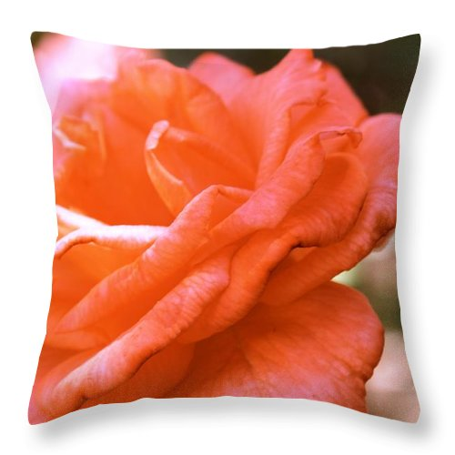 Rose Throw Pillow featuring the photograph Coming Up Roses by Melissa Millsap-Young