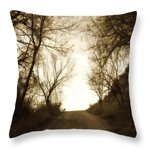 Rural Throw Pillow featuring the photograph Coming Up The Drive 3 by Marilyn Hunt