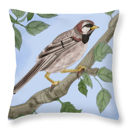 Sparrow Throw Pillow featuring the painting Common House Sparrow by Anne Norskog