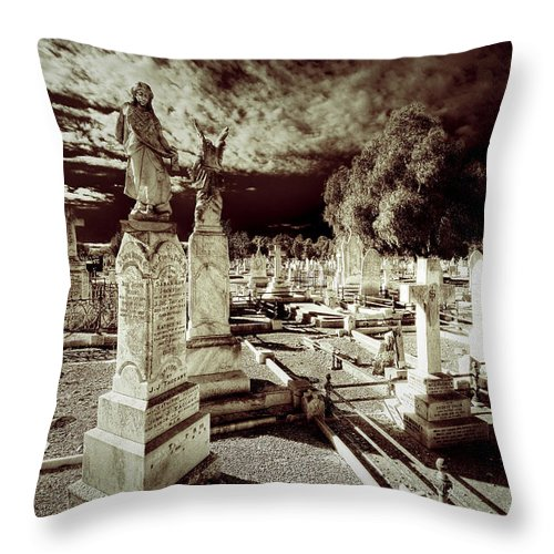 Angels Throw Pillow featuring the photograph Company Of Angels by Wayne Sherriff