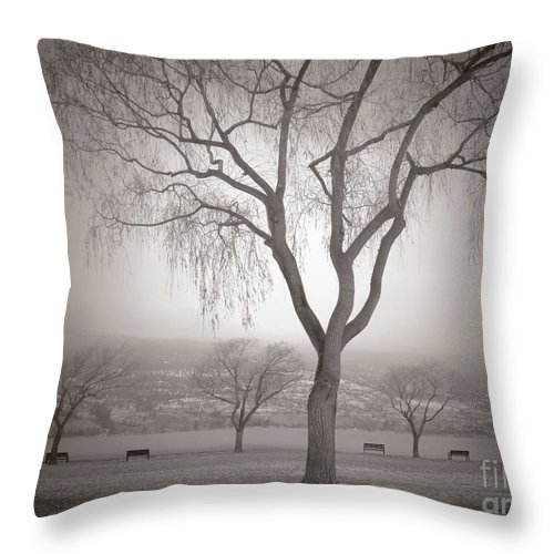 Summerland Throw Pillow featuring the photograph Composure by Tara Turner