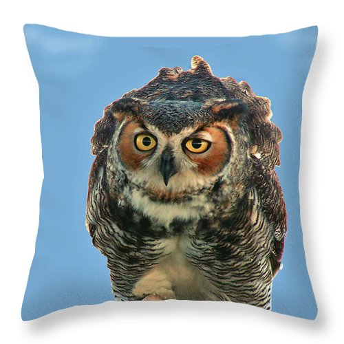 Nature Throw Pillow featuring the photograph Concentration by Peg Urban