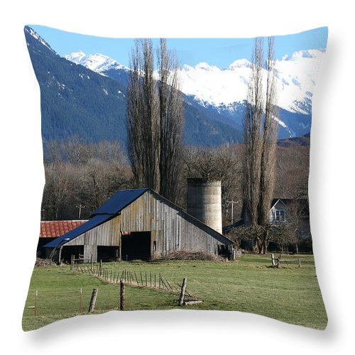 Barn Throw Pillow featuring the photograph Concrete Barn Ba2006 by Mary Gaines