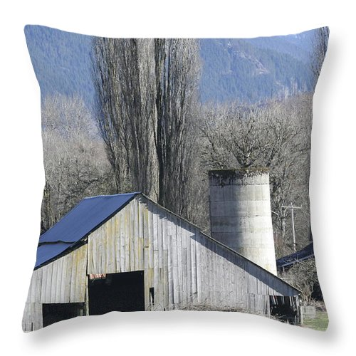 Barn Throw Pillow featuring the photograph Concrete Barn Br-2003 by Mary Gaines