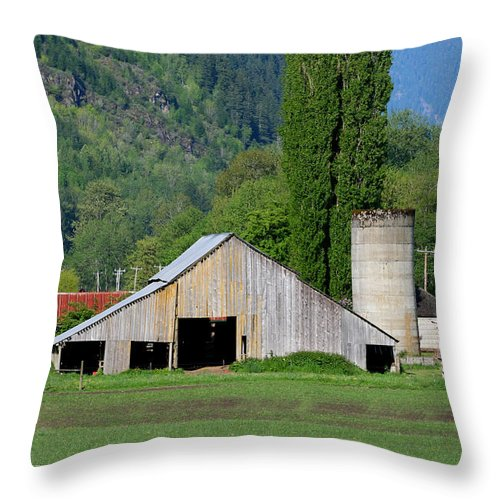 Barn Throw Pillow featuring the photograph Concrete Barn Summer Ba-2008 by Mary Gaines