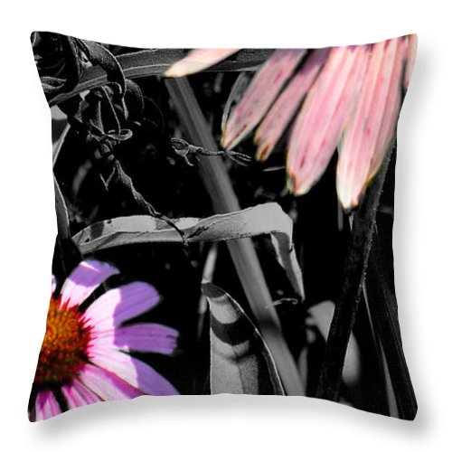 Purple Cone Flower Throw Pillow featuring the photograph Cone Flower Tapestry by Steve Karol