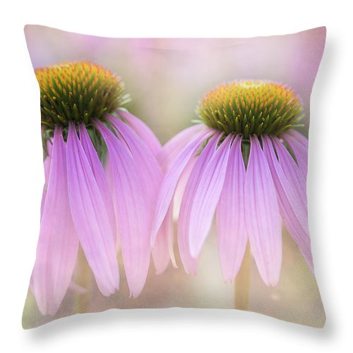 Flowers Throw Pillow featuring the photograph Cone Flowers by Jeff Klingler