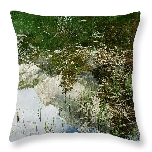 Mirror Lake Throw Pillow featuring the photograph Confusion by Kathy McClure