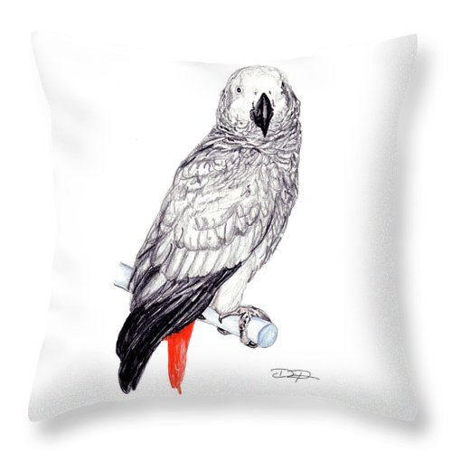 Parrot Throw Pillow featuring the drawing Congo African Grey Parrot by Dan Pearce