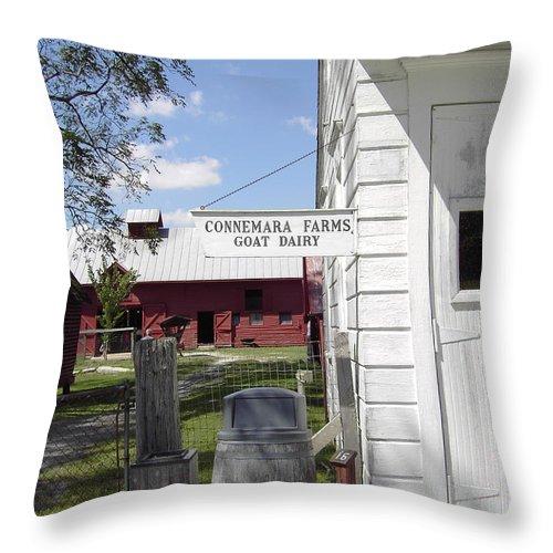 Connemara Flat Rock North Carolina Throw Pillow featuring the photograph Connemara Flat Rock North Carolina by Flavia Westerwelle