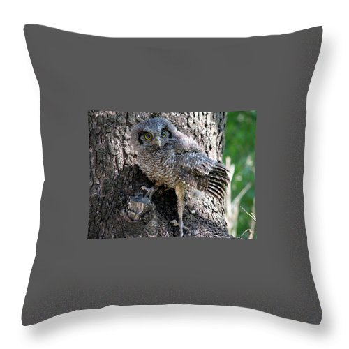 Wood Tree Throw Pillow featuring the photograph Contact by Leandro Sebastian  Marquez