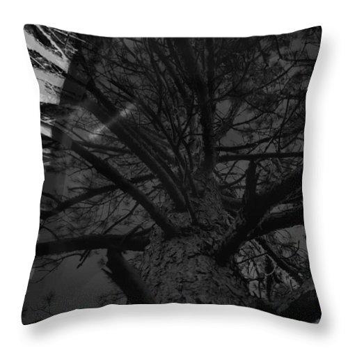 Shadow Throw Pillow featuring the photograph Contour by Damijana Cermelj