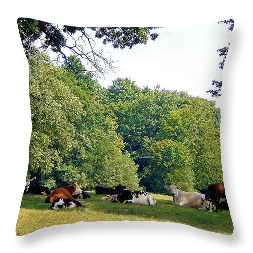 Landscapes Throw Pillow featuring the photograph Cool Gathering by Jan Amiss Photography