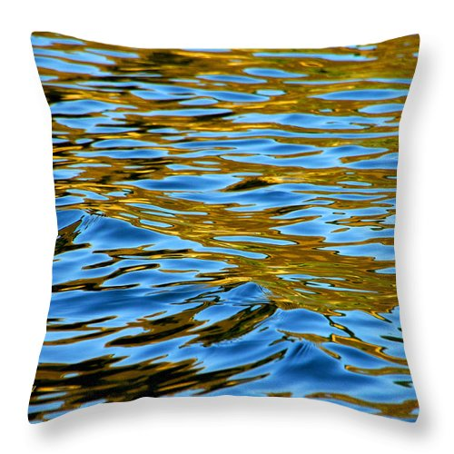 Water Throw Pillow featuring the photograph Copper Melody by Donna Blackhall