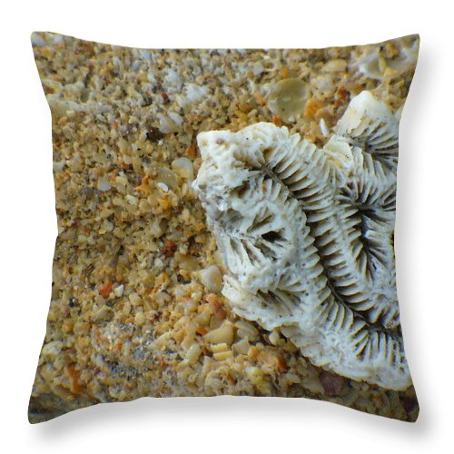 Coral Throw Pillow featuring the photograph Coral Closeup by Peggy King