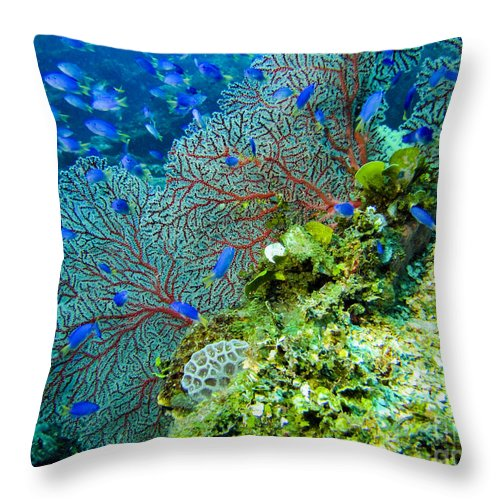 Coral Throw Pillow featuring the photograph Coral In Truk by Dan Norton