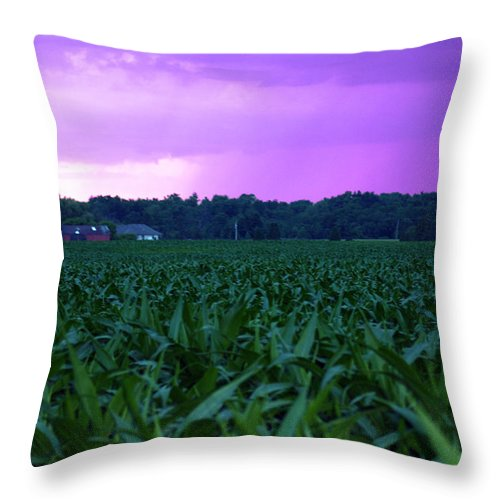 Purple Rain Throw Pillow featuring the photograph Cornfield Landscapes Purple Rain by Cathy Beharriell