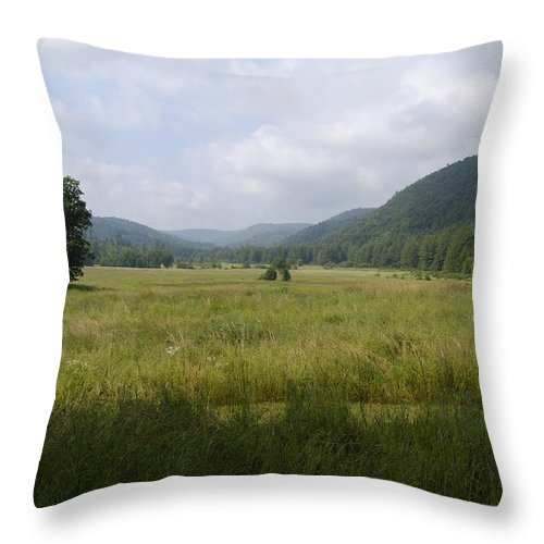 Spring Throw Pillow featuring the photograph Cornwall Plains by Tom Heeter