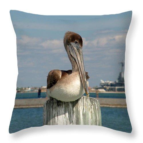 Bird Throw Pillow featuring the photograph Corpus Christi Pelican by Mark Grayden