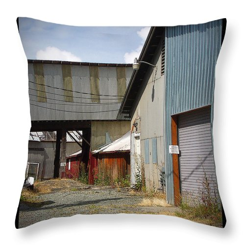 Corrugated Throw Pillow featuring the photograph Corrugated by Tim Nyberg
