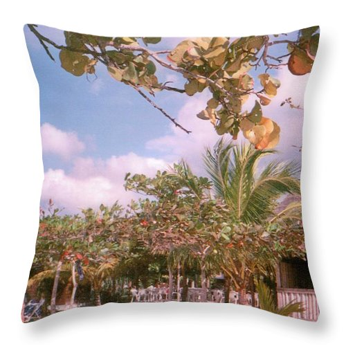 Jamaica Throw Pillow featuring the photograph Cosmos At Negril by Debbie Levene