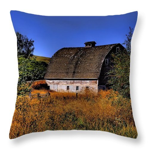 Landscape Throw Pillow featuring the photograph Country Barn by David Patterson