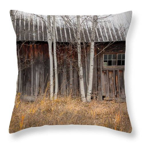 Barn Throw Pillow featuring the photograph Country Barn by Idaho Scenic Images Linda Lantzy