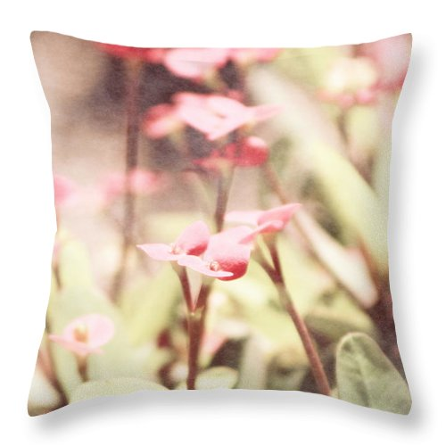 Prism Pink Throw Pillow featuring the photograph Country Memories in Prism Pink by Colleen Cornelius