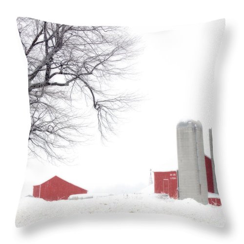 Red Throw Pillow featuring the photograph Country Red And White by Cathy Beharriell