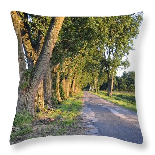 Road Throw Pillow featuring the photograph Country Road by David Arment