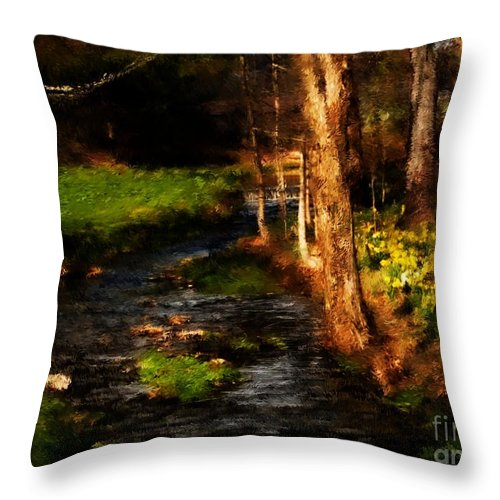 Digital Photo Throw Pillow featuring the photograph Country Stream by David Lane