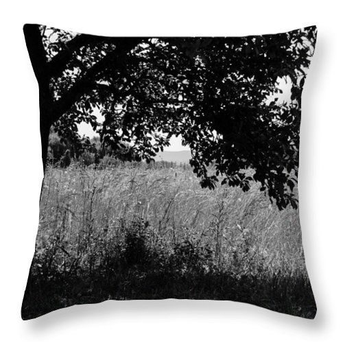 Countryside Throw Pillow featuring the photograph Countryside Of Italy Bnw by Andrea Mazzocchetti