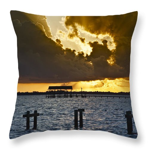 Bay Throw Pillow featuring the photograph Courtship by Janet Fikar
