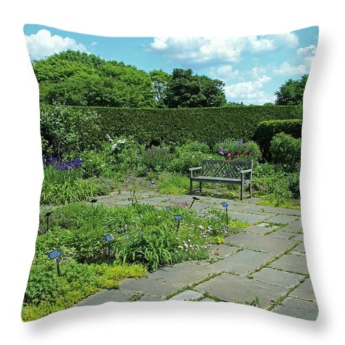 Nature Throw Pillow featuring the photograph Courtyard Afternoon by Michiale Schneider