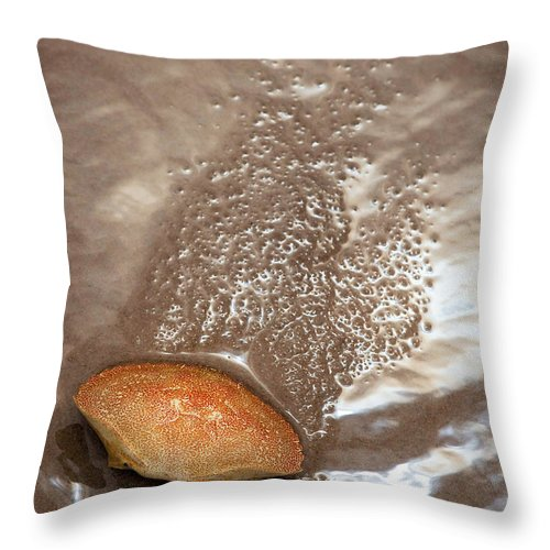 Beach Throw Pillow featuring the photograph Crab Shell On Beach by Steve Somerville