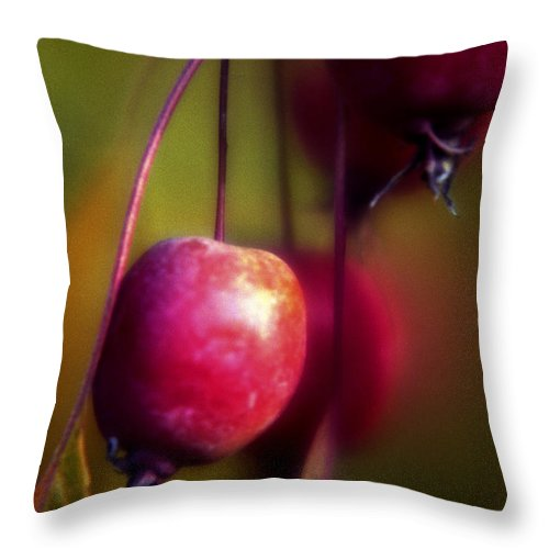 Macro Throw Pillow featuring the photograph Crabapple by Lee Santa