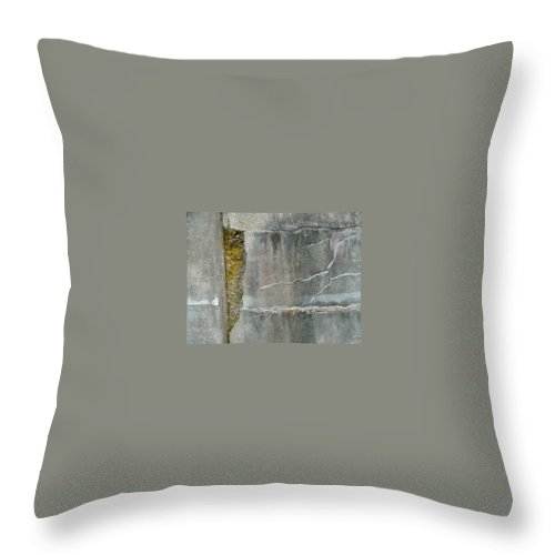 Wall Throw Pillow featuring the photograph Cracked Wall by Claudia Stewart