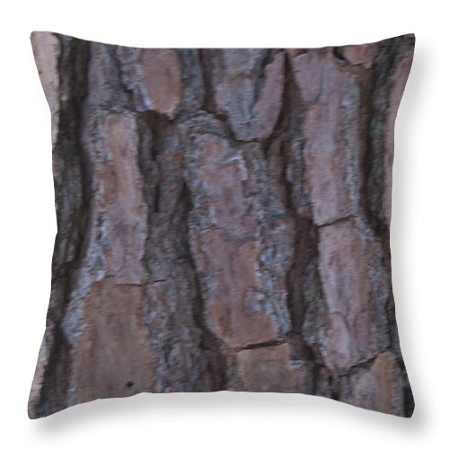 Cracks<anger Throw Pillow featuring the photograph Cracks Of Time by Douglas Barnett
