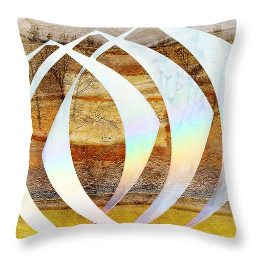 Sculpture Throw Pillow featuring the photograph Creation Revisited by Ed Hall