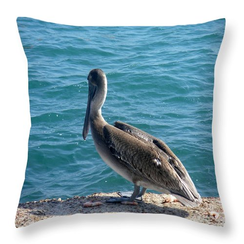 Nature Throw Pillow featuring the photograph Creatures Of The Gulf - Lulled By The Waves by Lucyna A M Green