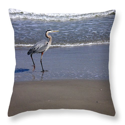 Nature Throw Pillow featuring the photograph Creatures Of The Gulf - Walk This Way by Lucyna A M Green