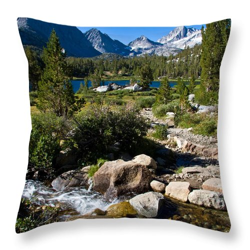 Heart Lake Foliage Throw Pillow featuring the photograph Creek At Heart Lake by Chris Brannen