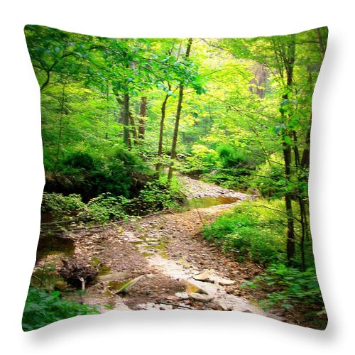 Nature Throw Pillow featuring the photograph Creek Bend by Tatiana Gorbett