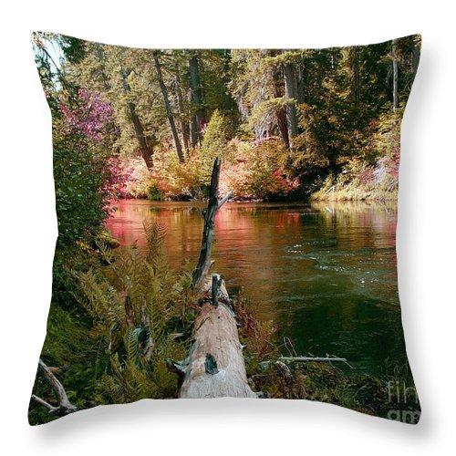Fall Season Throw Pillow featuring the photograph Creek Fall by Peter Piatt