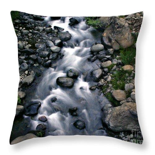 Creek Throw Pillow featuring the photograph Creek Flow by Peter Piatt
