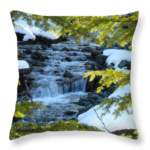 Nature Throw Pillow featuring the photograph Creek by Lisa Spero