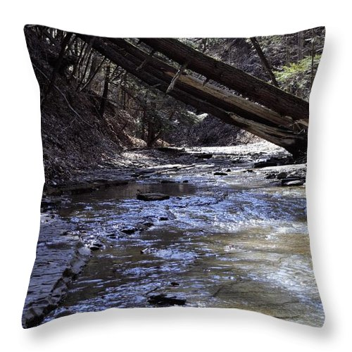 Water Throw Pillow featuring the photograph Creekside by Christina McNee-Geiger